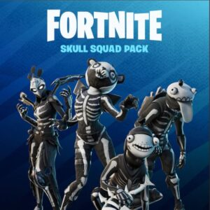 خرید پک فورتنایت Fortnite - Skull Squad Pack